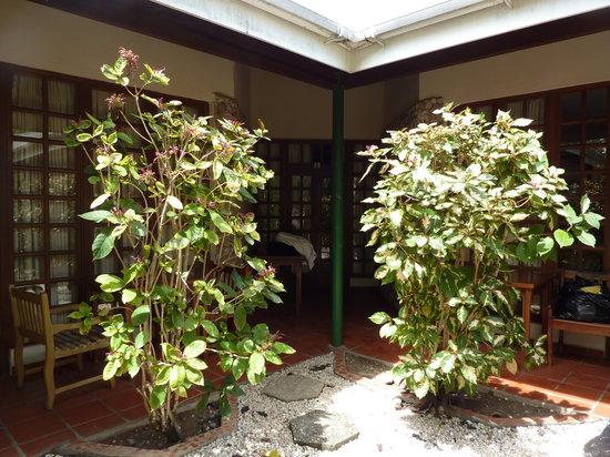 Shepherd's Inn: Garden room