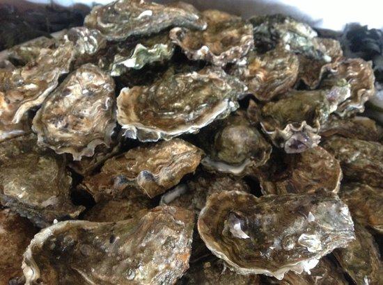 Degustation Chez Jaouen: Huîtres à gogo !