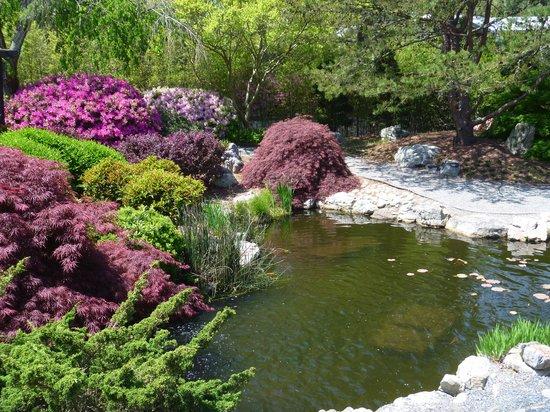 Norfolk Botanical Garden: Japanese Garden Area