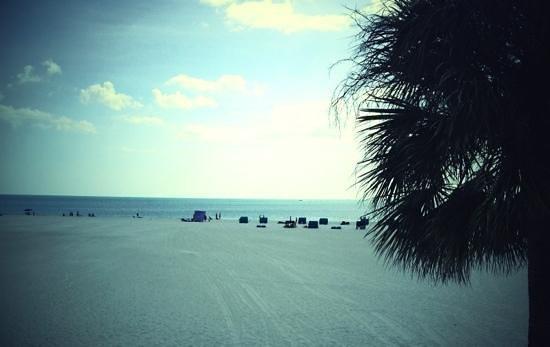 Carousel Inn on the Beach: the beach
