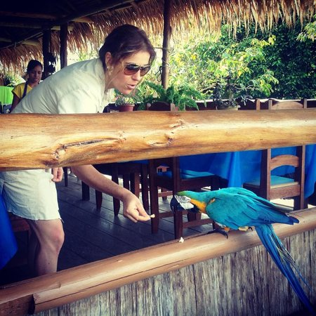 Tariri Amazon Lodge: Breakfast Time