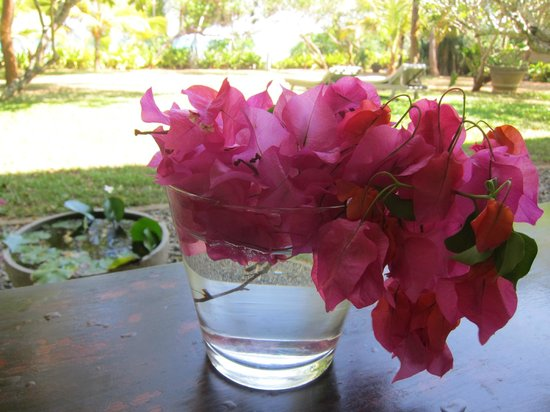 The Last House: Flowers on the dining room table