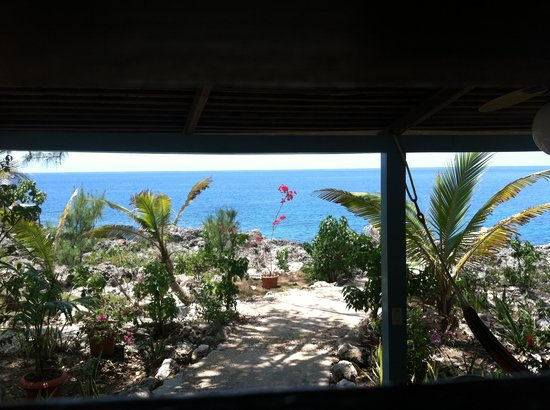 Sea Grape Villas: The view out of the front window of Sea Grape