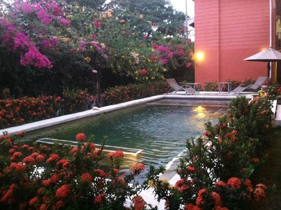 Hotel Samara Inn: Awesome pool