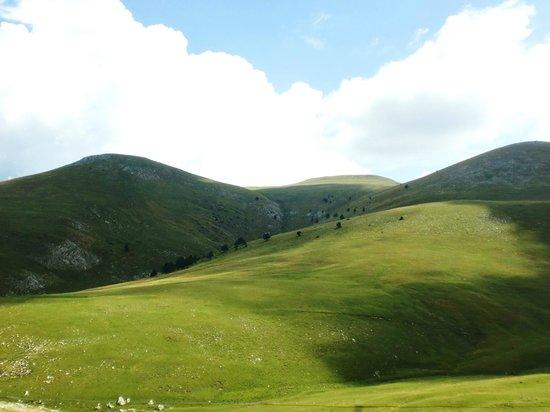 La Molina, Spain: prados verdes