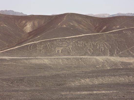 Jat Peru Adventures: Nasca Lines