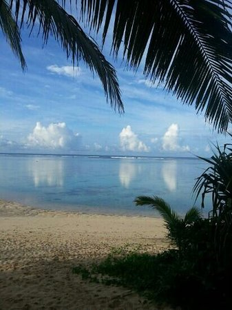 Palm Grove: from b1...water like glass in the morning....