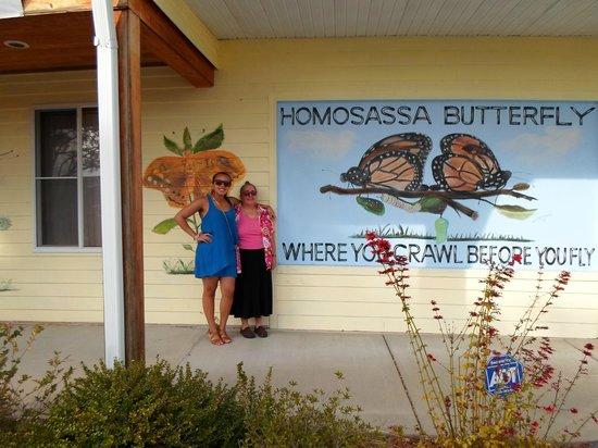 Homosassa Butterfly: Painted Facade