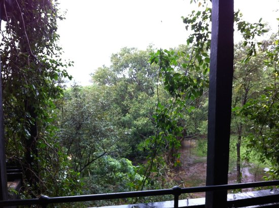 Heritance Kandalama: view from the room