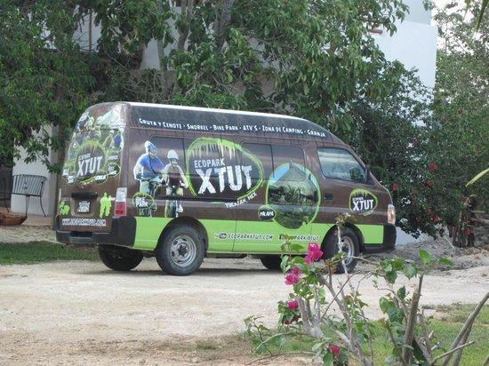 Ecopark Xtut: Xtut van