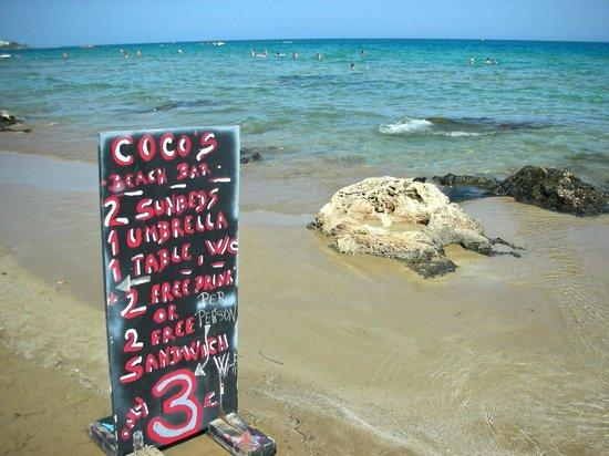 Stalis Beach: кокос бар