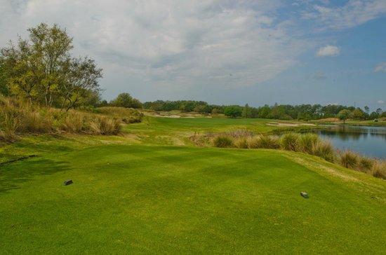 Barefoot Resort - Fazio Golf Course: Fazio #5