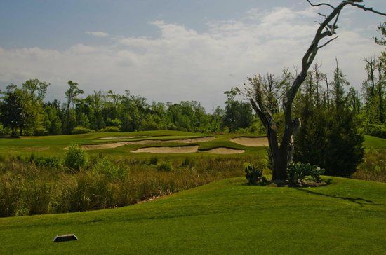 Barefoot Resort - Fazio Golf Course: Fazio #17