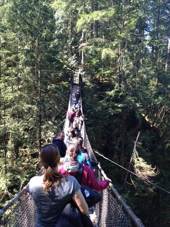 Lynn Canyon Park: Lynn Canyon Suspension Bridge