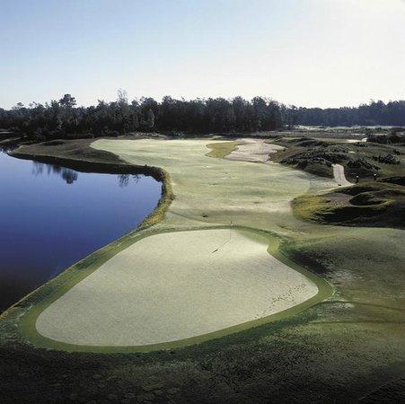 Barefoot Resort & Golf - Dye Course: Dye #9