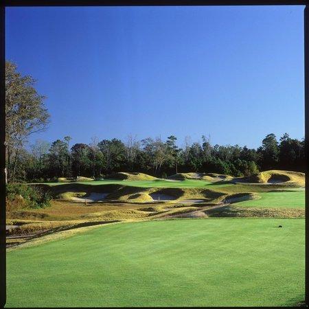 Barefoot Resort & Golf - Dye Course: Dye #15