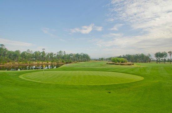 Barefoot Resort - Love Golf Course: Love #16