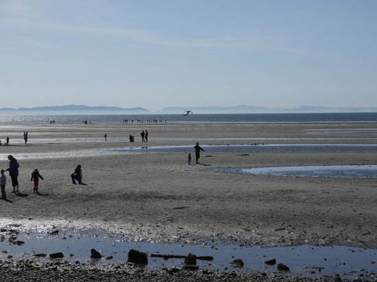 Sandcastle at Birch Bay: The tidal flats make a great playground at low tide. Don't eat the clams!