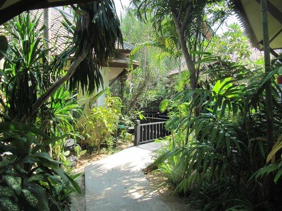 Rummana Boutique Resort: the hotel area