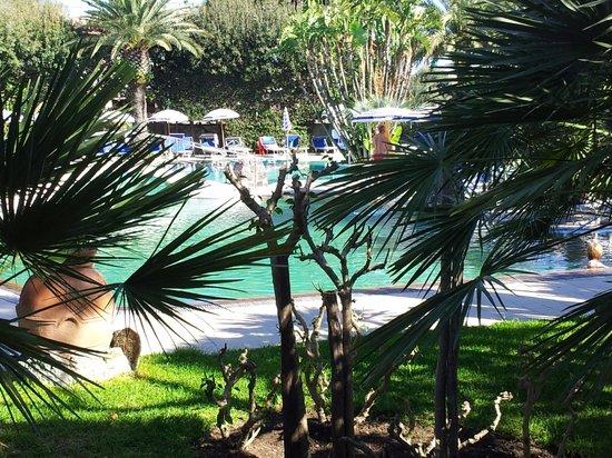 Park Hotel Terme Mediterraneo : Vista piscina esterna da cortile