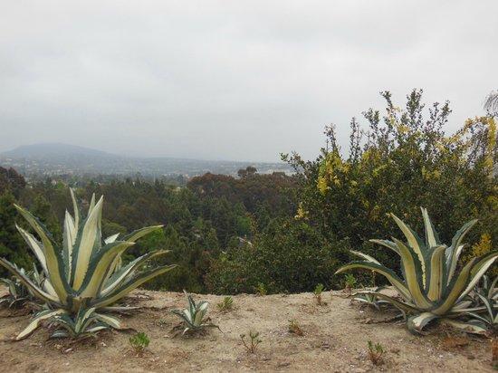 Four Seasons Residence Club Aviara: Daytime view from villa