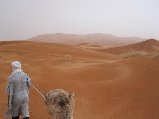 Guest House Merzouga: Dans le deserte