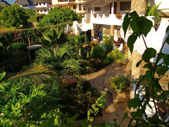 Jambo House Resort: Parte del giardino