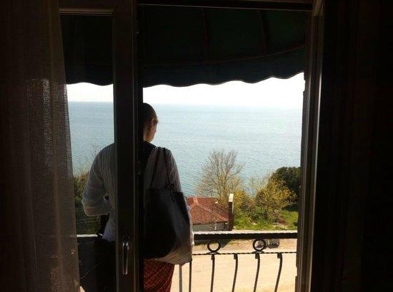 Zinos Hotel: Balkon manzarası