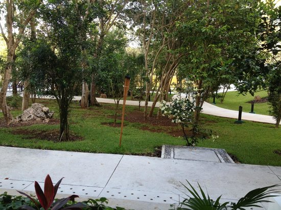 Courtyard Cancun Airport: Photo of garden from breakfast room