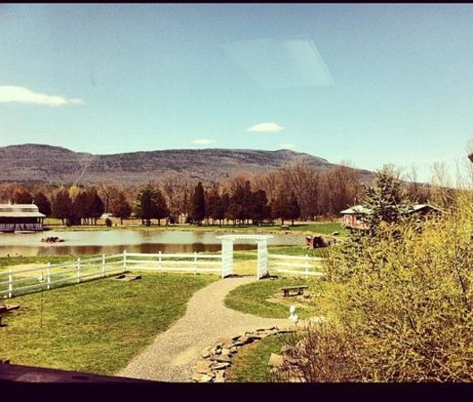 The Kaaterskill: Our view