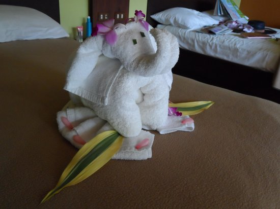Volcano Lodge & Springs: Towel art