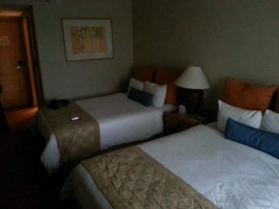 Quality Hotel Real San Jose : worn out mattresses