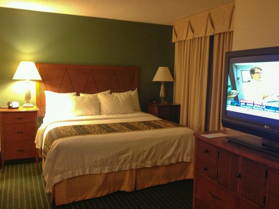 Residence Inn Denver Airport: nice, comfortable bed