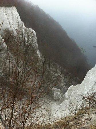 Nationalpark Jasmund Königsstuhl: Blick auf die Kreidefelsen von Aussichtsplattform
