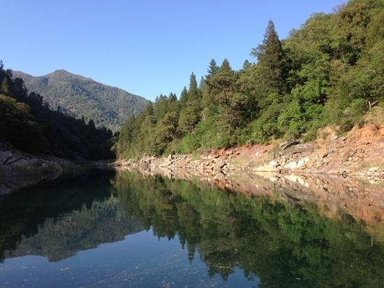 Shasta Lake : go to the ends of any arm for the really beautiful spots.
