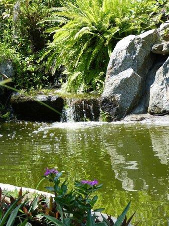 Casa Virgilios: Enchanting waterfall & pond