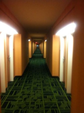 Fairfield Inn & Suites Grand Rapids: new carpet in hallways