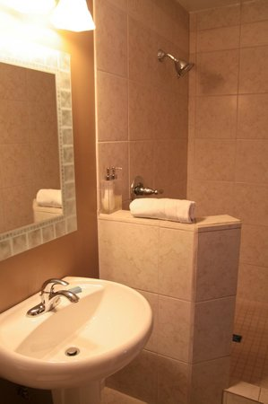 Windermere Lakeside Bed and Breakfast: Swansea room with walk-in shower