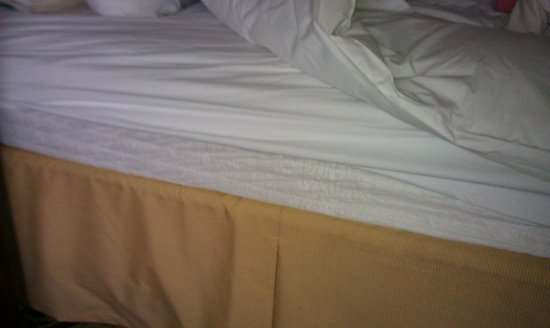 Omaha Marriott : again another shoot of bed with wrong size bedding guess its one size fits all here