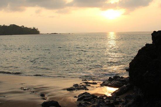 La Paloma Lodge : Beach at sunset