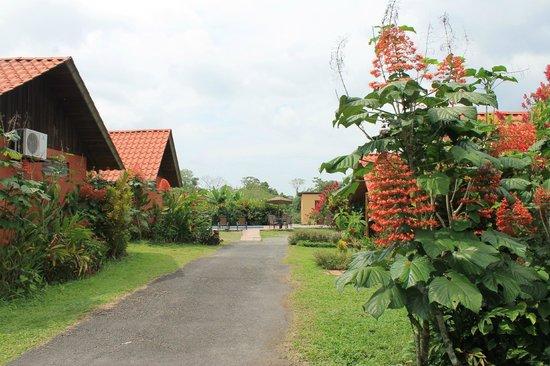 Hotel Villas Vista Arenal: parque de las cabañas