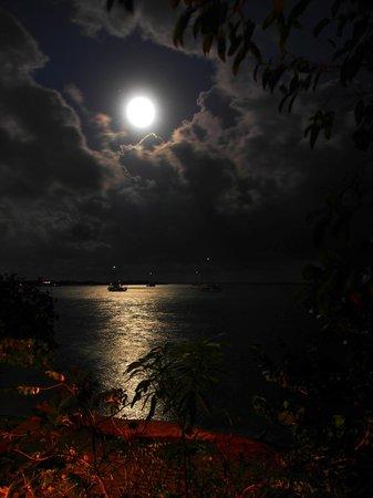 Harry's Cozy Cabanas: full moon