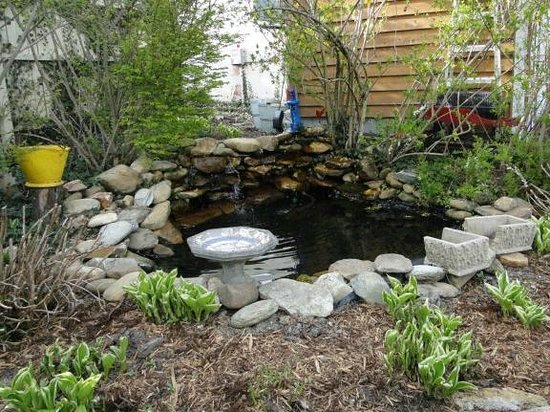 Homestead Inn: Pond