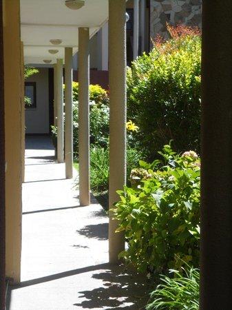 Hotel Del Pilar: nuestros pasillos
