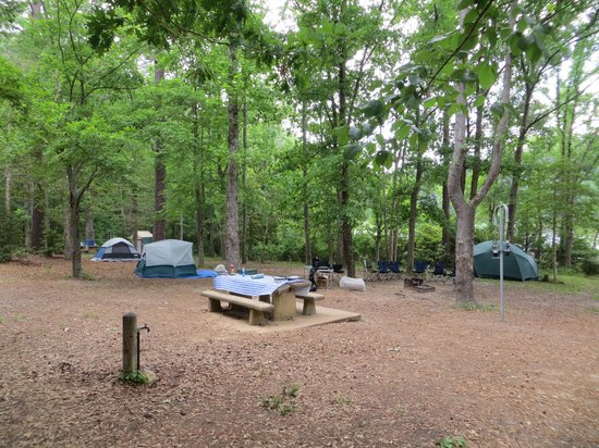 Huntsville State Park: Campsites sites 102 and 104
