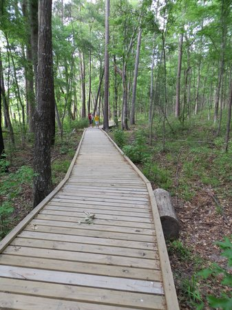Huntsville State Park: Boardwalk on trail