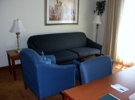 Homewood Suites by Hilton East Rutherford-Meadowlands: Living Room