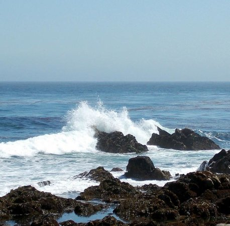 Monterey Peninsula Recreational Trail: Beautiful views of the ocean