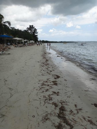 Island Routes Caribbean Adventures - Jamaica: Sandals Negril - beach