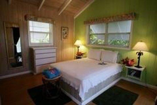 Photo of Club Soleil Resort and Marina Great Abaco Island